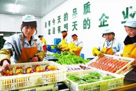 沃尔玛生鲜配送中心在广东开始试行水果冷链